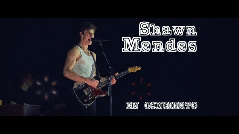 Shawn Mendes en concierto